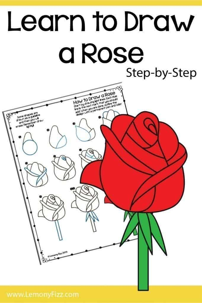 Draw a rose PDF preview.