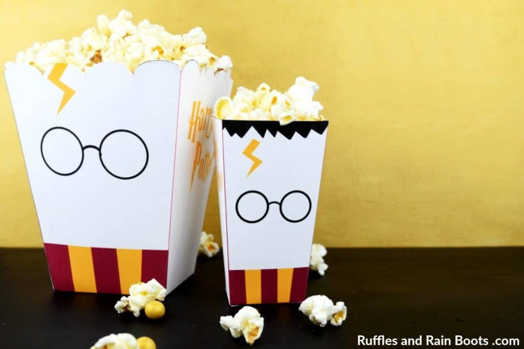 Harry Potter craft paper popcorn boxes.