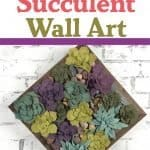 Succulent wall art on a white brick background.