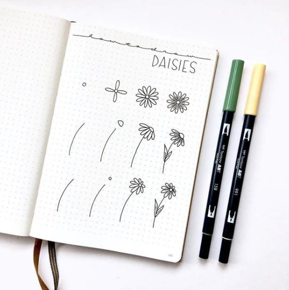 daisies - augustrose-doodles