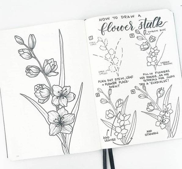 flower-stem-bonjournal