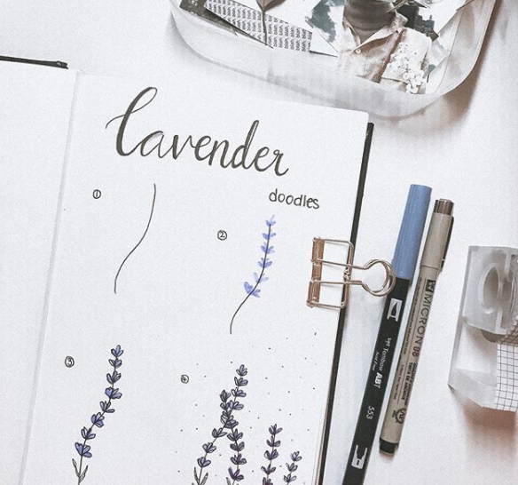 lavender-withkx