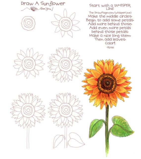 sunflower-the-draw-page