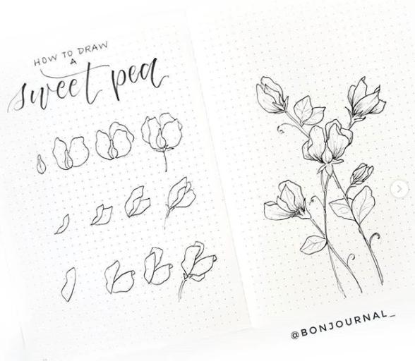 sweet-pea-bon-journal