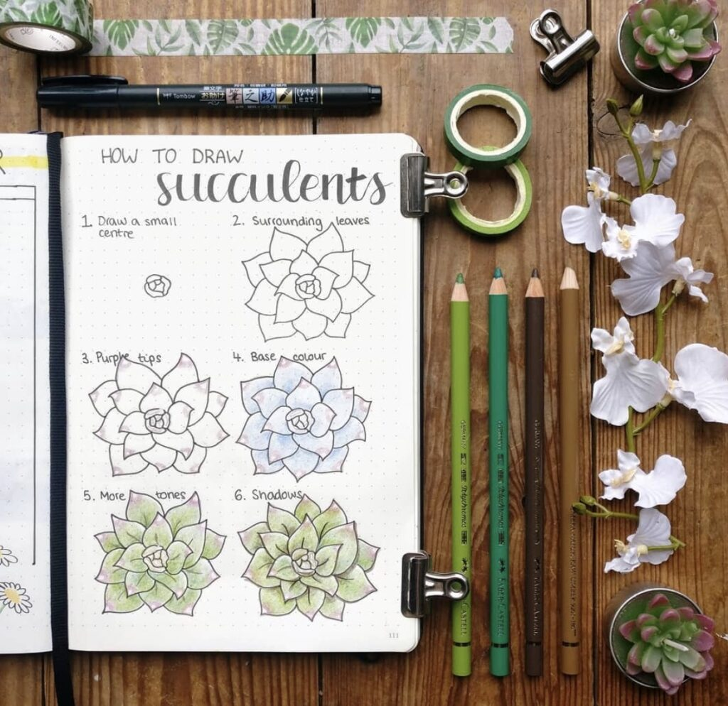 draw-and-color-succulents-bujocute