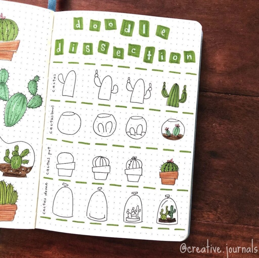draw-color-succulents-cacti-julipenobagelco
