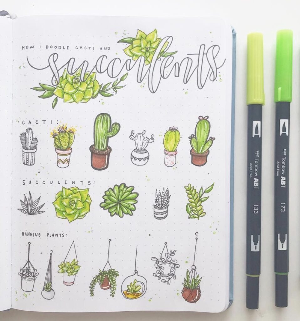 draw-plants-succulents-raelynnsbujo
