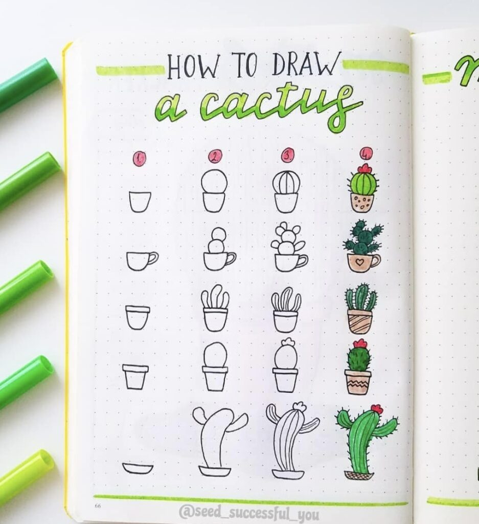 how-to-draw-a-cactus-seed-successful-you