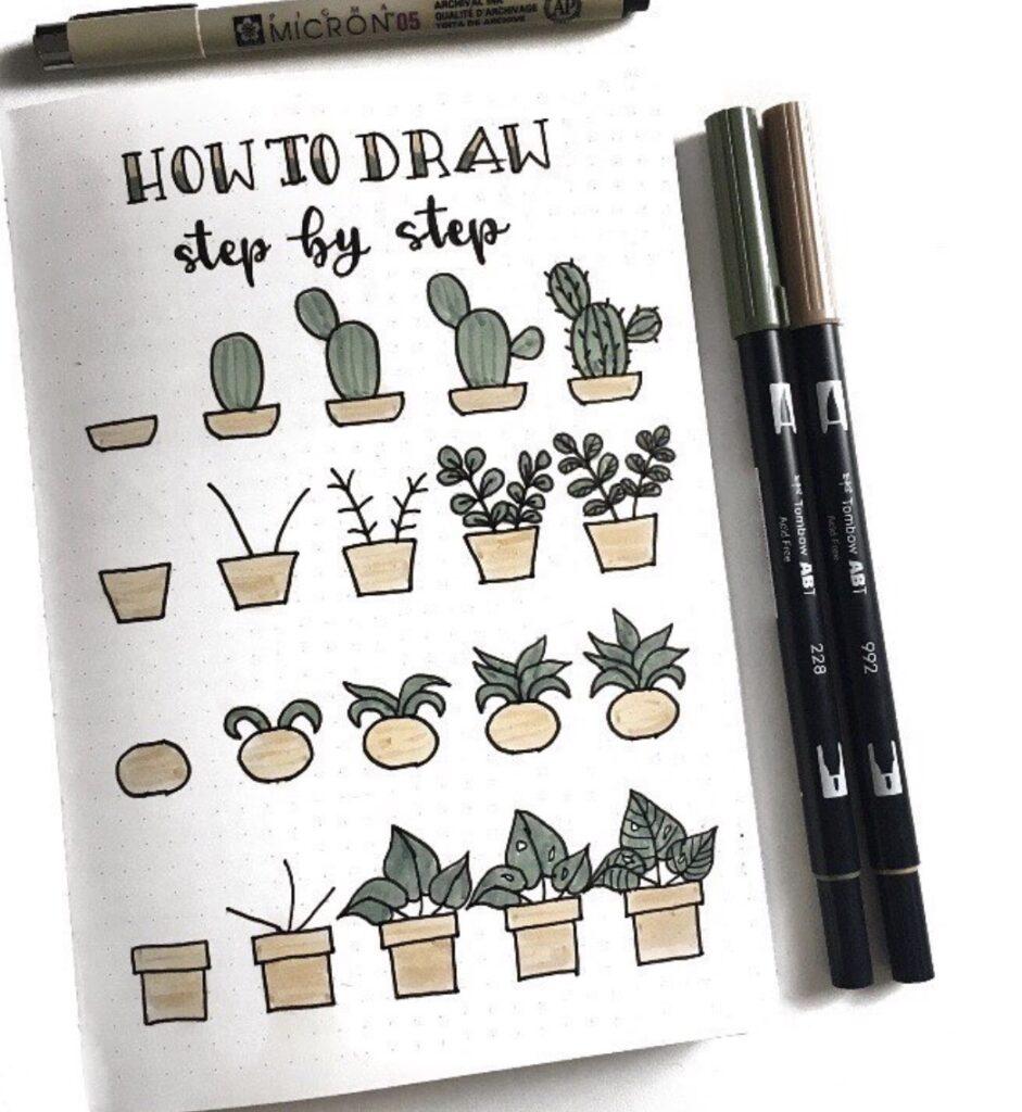plants-succulents-cozydaydreams
