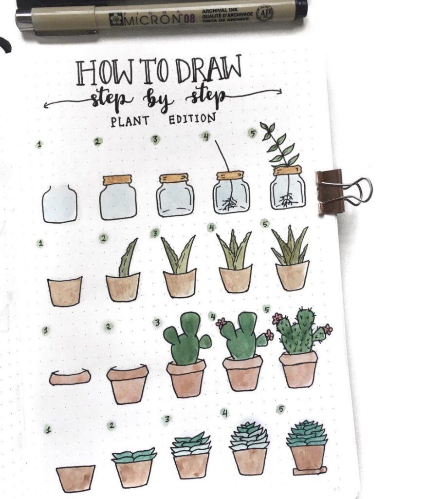step-by-step-plants-cozydaydreams