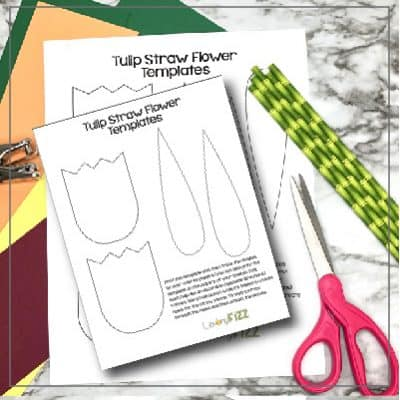 Paper Tulip with Straw Stems Template